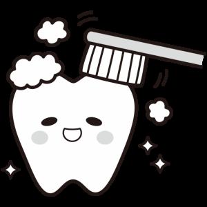 虫歯菌の感染②