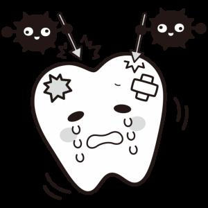 虫歯菌の感染①